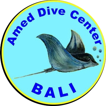 Hotel accomodation & dive package with Amed Dive Center Bali