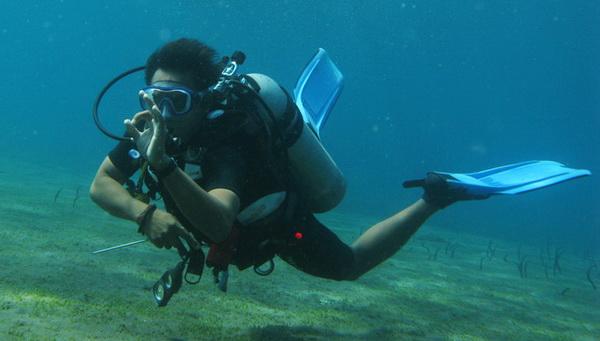 Scuba diver - OK