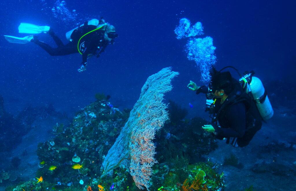 Scuba Divers at Amed dive site