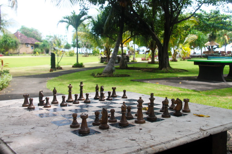 Hotel Resort Facilities & Services - chess table in our garden