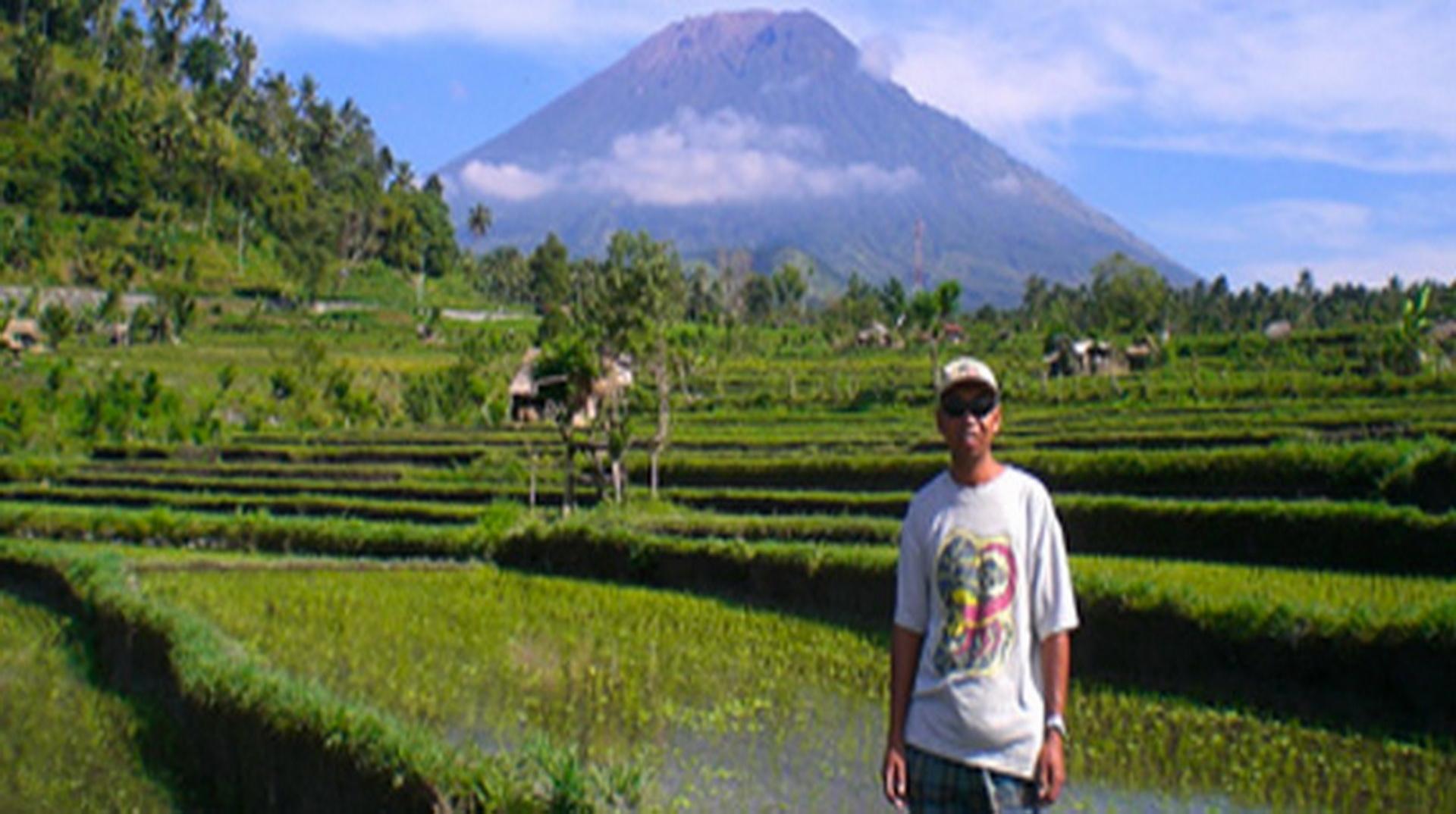 rice fields trekking trip Amed Bali